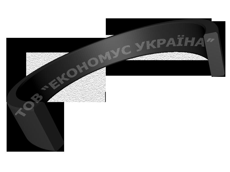 Направляющее кольцо F01