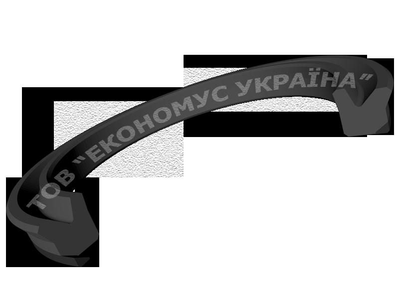 Уплотнение поршня (поршневая манжета) K02_RD