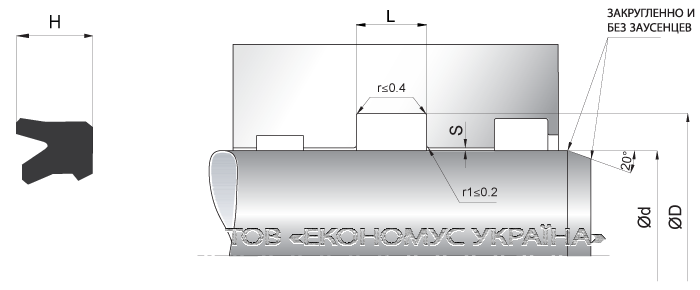 Посадочное место уплотнения штока (штоковой манжеты) S17_R