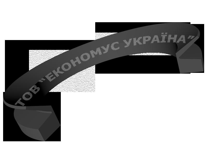 Уплотнение ротора (сальник) R06_R