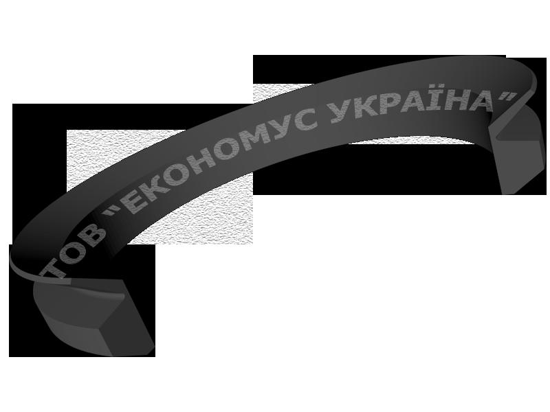 Уплотнение ротора (сальник) R07_A