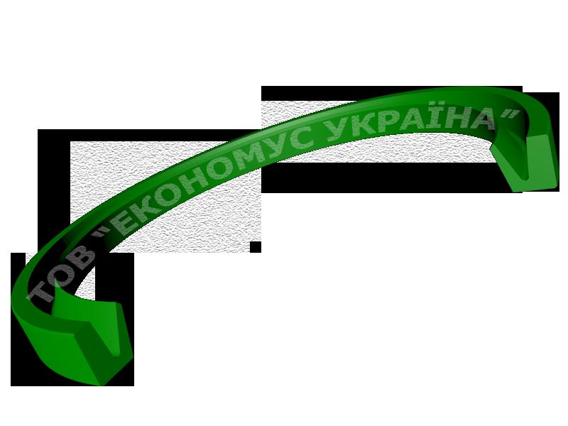 Уплотнение ротора (сальник) R08_A