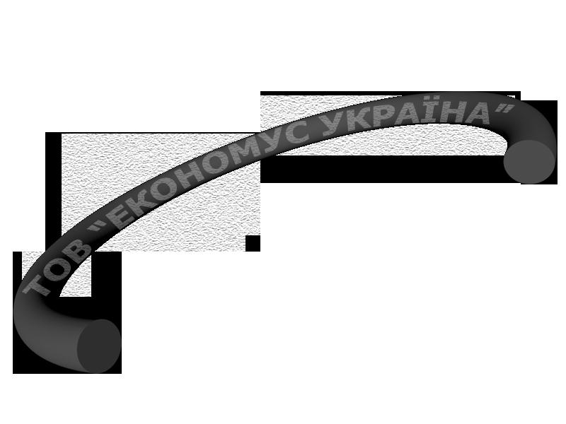 Кольцо круглого сечения R13