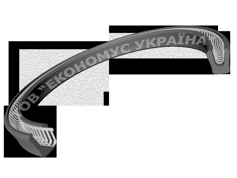 Штоковая манжета (уплотнение штока) S19_F